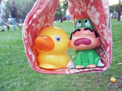duck11