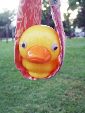duck6